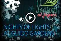 Nights of Lights at Guido Gardens - presented by Seasons of Japan