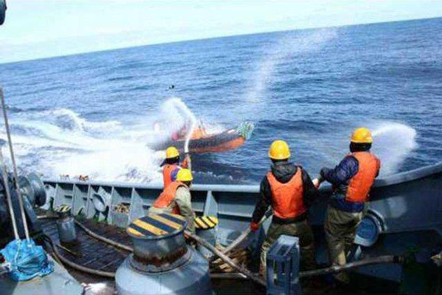 Antarctica Whaling 5913114