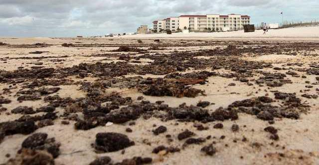 Gulf Oil Spill Heal13