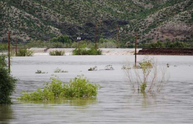 Border Flood DN101 5990369