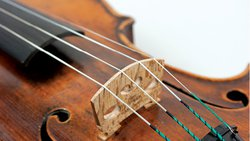 Pilat-Paul-Violin-1.jpg